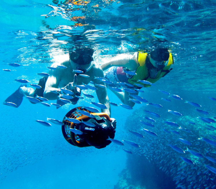 Snorkeling in Los Cabos - Grand Velas