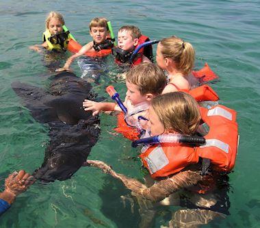 Snorkeling Package at Grand Velas Riviera Maya, Mexico
